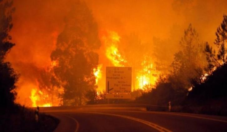 Portuqaliyada meşə yanğınlarında 63 nəfər ölüb
