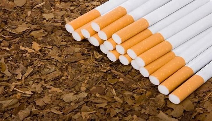 Azərbaycan Tütün İstehsalçıları və İxracatçıları Assosiasiyası təsis edilib
