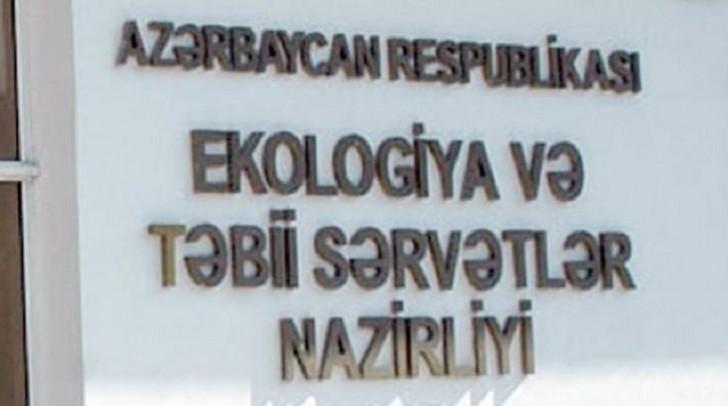 Xəzər dənizinin Qaradağ sahilində ekoloji monitorinq keçirilib