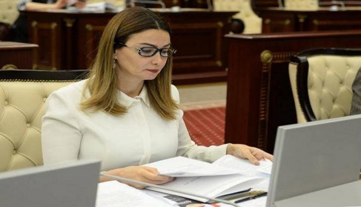 Qənirə Paşayeva MM-də Tovuzun problemləri ilə bağlı hökumətə çağırış edib