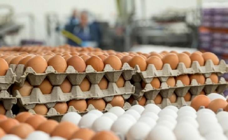 Yumurtanın qiymətini kim bahalaşdırır?-