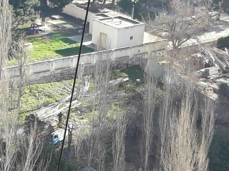Xətai rayonunda gecə ilə ağaclar kəsildi-