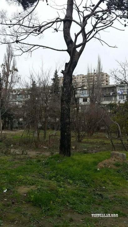 Nəsimi rayonunda həyət uğrunda qarşıdurma: