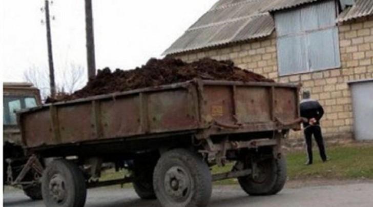 Sabirabadda traktor azyaşlını vuraraq öldürüb