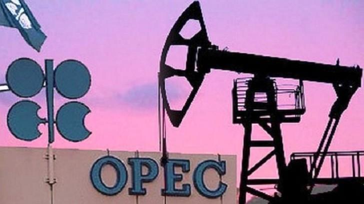 OPEC-in nefti bahalaşdırması