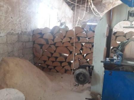 Qanunsuz ağac kəsilməsi faktı aşkarlanıb