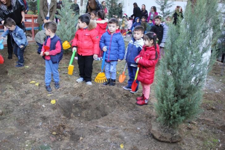 Payız ağacəkmə kampaniyası davam edir