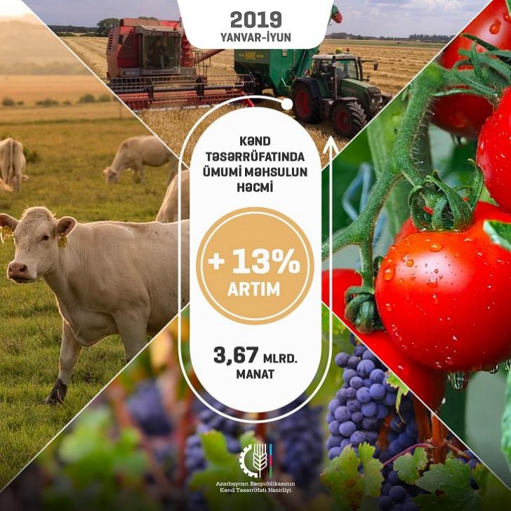 Bu ilin 6 ayı ərzində azərbaycanın kənd təsərrüfatında 13% artım qeydə alınıb