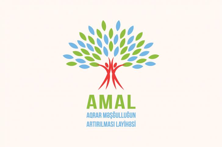 AMAL Akademiyasının YAY Məktəbinə qeydiyyat başlayır